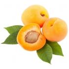 Flavourart Aroma Albicocca 10ml