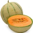 Perfumer's Apprentice Aroma Cantaloupe (Melone) 10ml