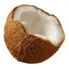 Perfumer's Apprentice Aroma Coconut (Cocco) 10ml