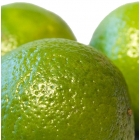 Perfumer's Apprentice Aroma Key Lime 10ml